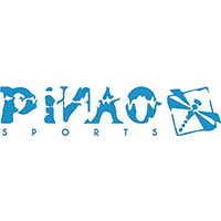 PiNAO Sports